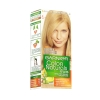 Garnier No:9 Sarı Colour Natural Boya